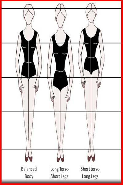 Vertical body shape types - balanced- long torso- short torso